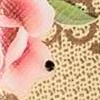گوچی گل بهاری