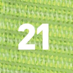 نایلون ۲۱