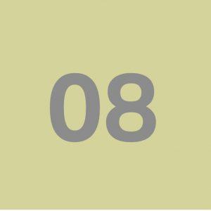 سیلیکون کد ۸