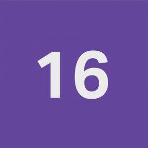 سیلیکون کد ۱۶
