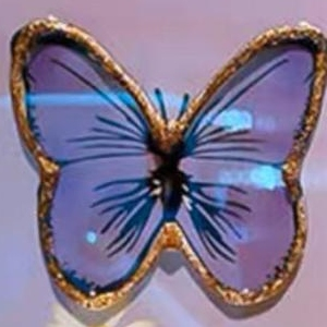 پروانه تکی